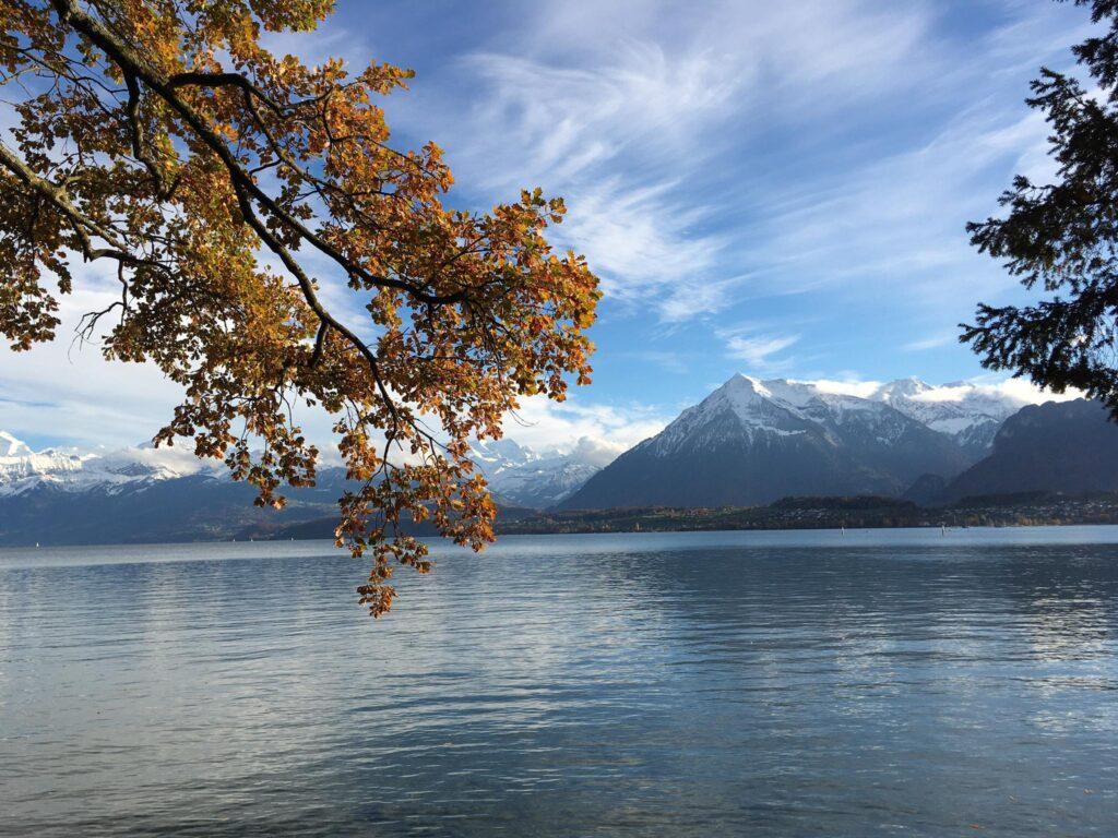 Thunersee mit Niesen in der Schweiz